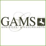 Hotel Gams